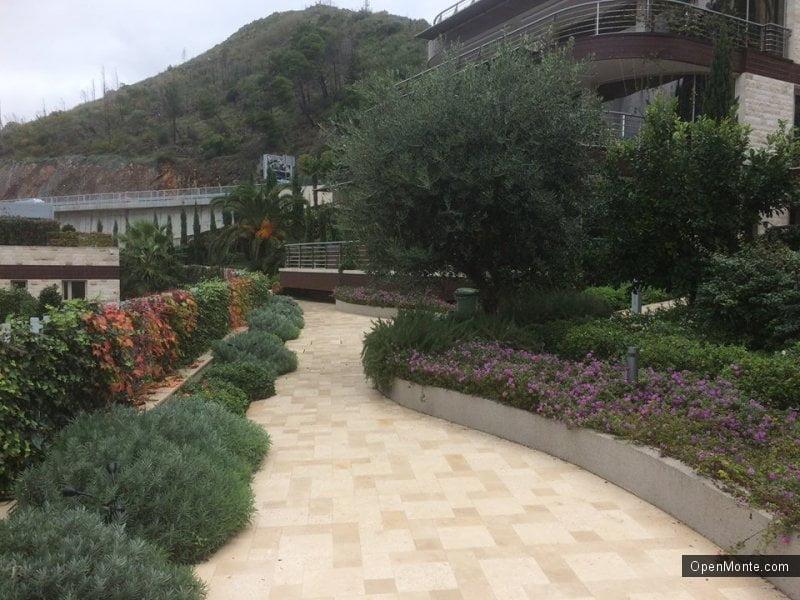 Интервью и люди Черногории: Ирина Кучма: «О растениях я могу говорить бесконечно»