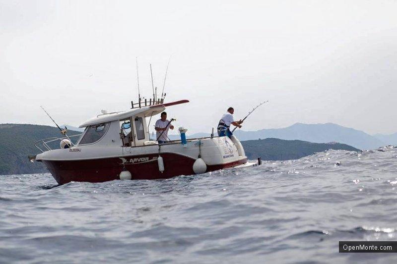 Ovo je interesantno: Фото Черногории: «Big game fishing Budva» в Черногории: нереальной красоты и величины тунцы в фото и видео