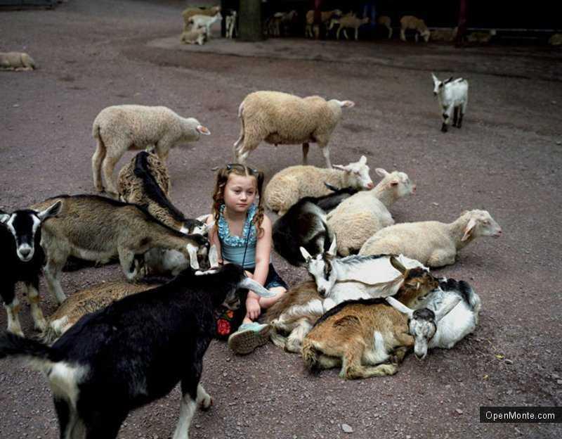 Это интересно: О Черногории: Обычная девочка с необычными друзьями