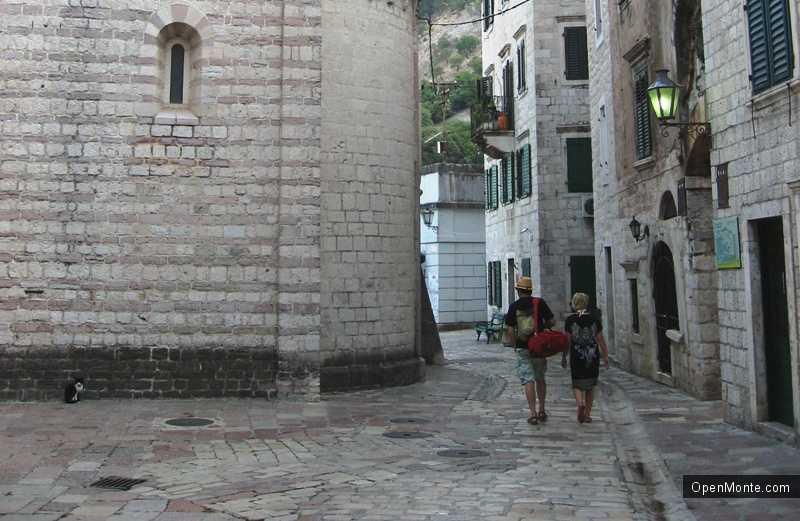 Новости Черногории: Lonely Planet: Котор — город кошек