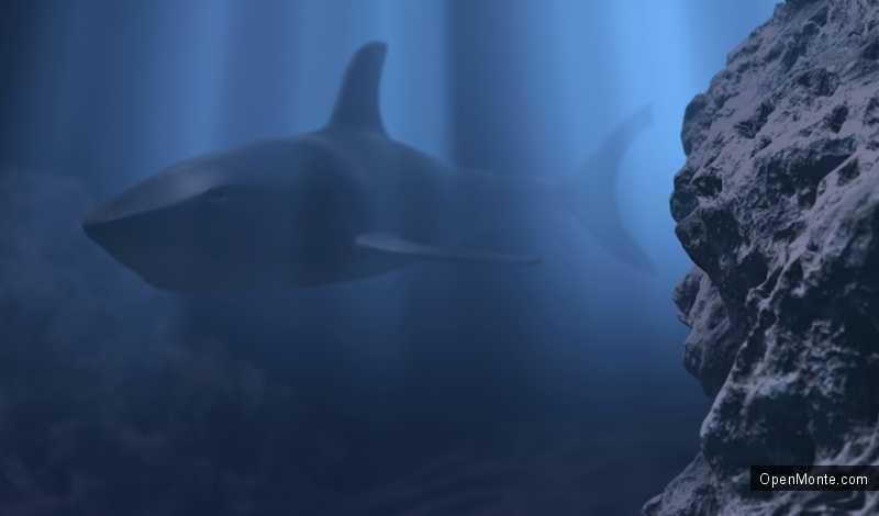 Новости Черногории: Власти опровергают информацию о белой акуле в Боко-Которском заливе