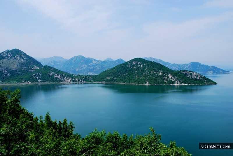 О Черногории: Скадарское озеро в Черногории
